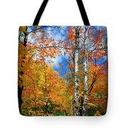 Minnesota Autumn Foliage Tote Bag
