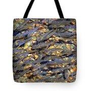 Minnows Tote Bag