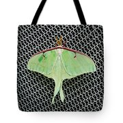 Mint Green Luna Moth Tote Bag