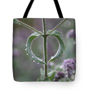 Mint Heart Tote Bag