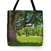 Minute Man National Historical Park  Tote Bag