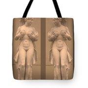 Mirror Image Adorable Beauty Princess Tote Bag by Navin Joshi