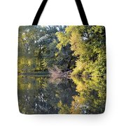 Mirror Mirror Tote Bag