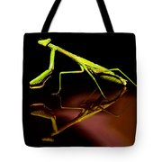 Mirror Mirror On The Car Tote Bag