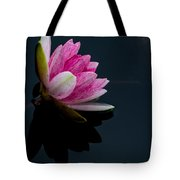 Mirror... Mirror On The Water Tote Bag
