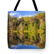 Mirror Reflections Of Fall Tote Bag