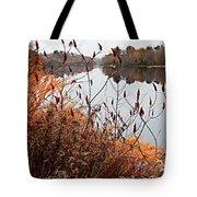 Mirror Smooth River Tote Bag