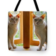 Mirrored Cats Tote Bag
