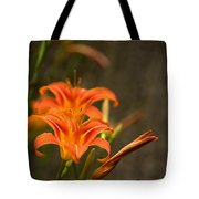 Mirrored Close Up Tote Bag