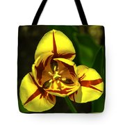 Mirrored Tulip Time Tote Bag