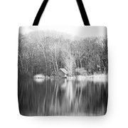 Mirroring House Portrait Tote Bag