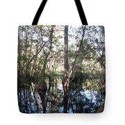 Mirroring The Swamp Tote Bag