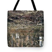 Mirroring Waters Tote Bag