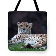 Mischievous Kitty Tote Bag