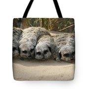 Mischievous Meerkats Tote Bag