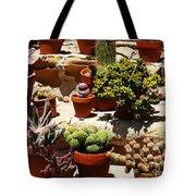 Mission Cactus Garden Tote Bag