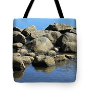 Mississippi Headwaters Tote Bag