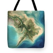 Mississippi River Delta, 2001 Tote Bag