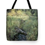 Mississippi River Headwaters Tote Bag