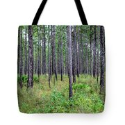 Mississippi Woods Tote Bag