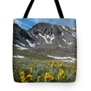 Missouri Mountain And Wildflower Landscape Tote Bag