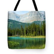Mistaya River And Mountains Tote Bag