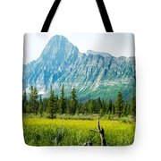 Mistaya River Valley And Mountain Range Tote Bag