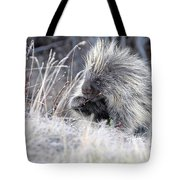 Mister Porcupine - Denali Alaska Tote Bag