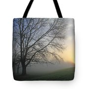Misty Dawn Tote Bag