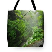 Misty Evening At Watkins Glen Tote Bag