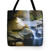 Misty Fall Tote Bag