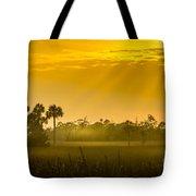 Misty Glade Tote Bag