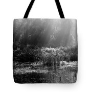 Misty Marsh - Black And White Tote Bag
