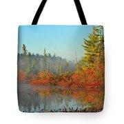 Misty Marsh Tote Bag