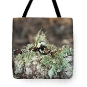 Misty Moss Tote Bag