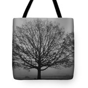 Misty Nature   Tote Bag