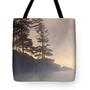 Misty Point Tote Bag