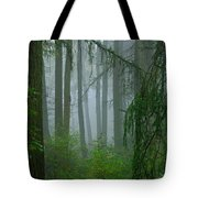 Misty Woodland Tote Bag