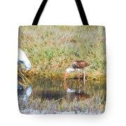 Mixed Group Of Shore Birds Tote Bag