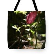 Moccasin Flower Tote Bag