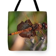 Mocha And Cream Dragonfly Profile Tote Bag
