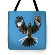 Mocking An Angel Tote Bag