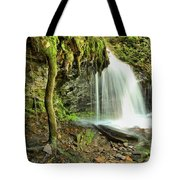 Mohawk Falls At Ricketts Glen Tote Bag
