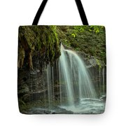 Mohawk Streams And Roots Tote Bag