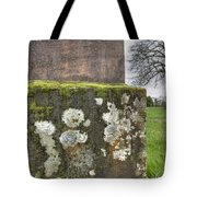Moldy Above And Below Tote Bag
