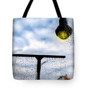 Molly's Window Tote Bag