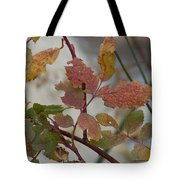 Molting Leaves  Tote Bag