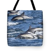 Mom And Baby On The Go Tote Bag
