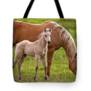 Mom And Foal Tote Bag