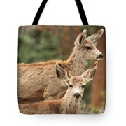 Mom And Junior Tote Bag